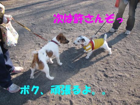 蜈ャ蝨・3_convert_20100109234641[1]