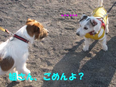 蜈ャ蝨・1_convert_20100109234520[1]