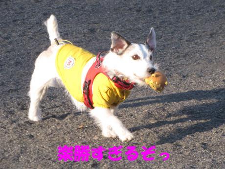 蜈ャ蝨・_convert_20100109234201[1]