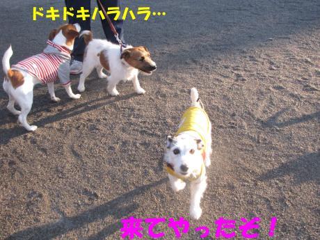蜈ャ蝨・_convert_20100109234101[1]
