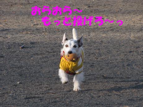 蜈ャ蝨・_convert_20100109234134[1]