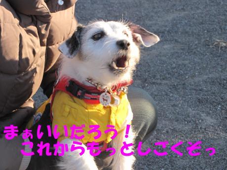 蜈ャ蝨・_convert_20100109234354[1]