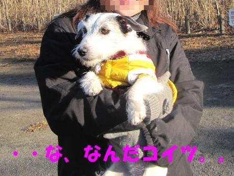 蜈ャ蝨・_convert_20100109234428[1]