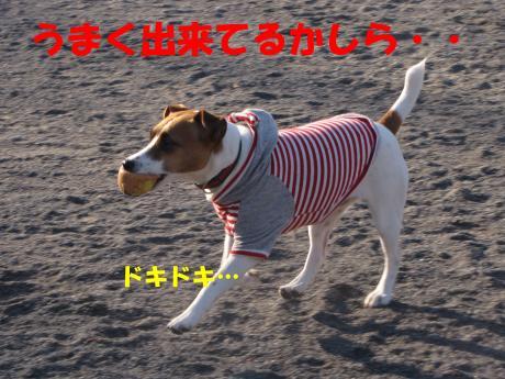 蜈ャ蝨・_convert_20100109234303[1]