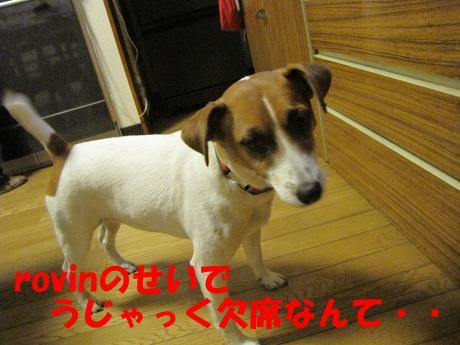 繝ュ繝エ繧」繝ウ2_convert_20100124232232[1]