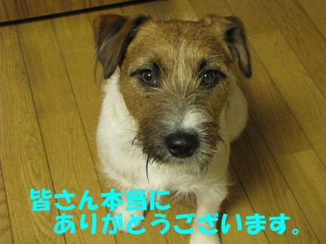 繝ュ繝エ繧」繝ウ_convert_20100124232205[1]