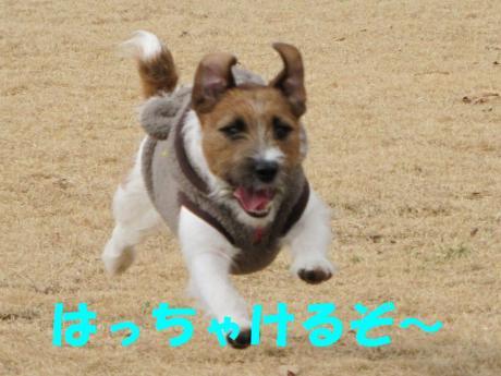 縺・§繧・▲縺・-2_convert_20100131204632[1]