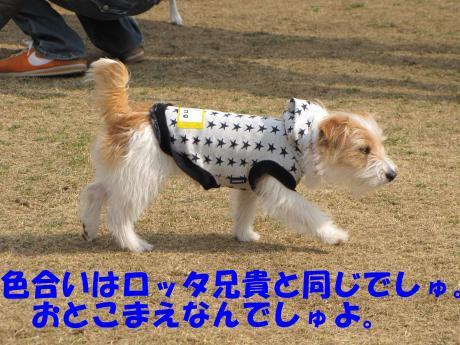 縺・§繧・▲縺・-13_convert_20100131205134[1]