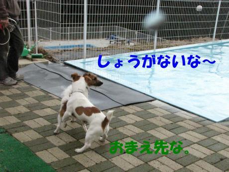 繝励・繝ォ3_convert_20100202233336[1]