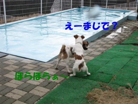 繝励・繝ォ2_convert_20100202233312[1]