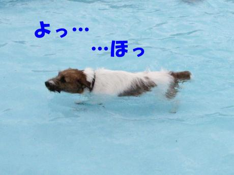 繝励・繝ォ7_convert_20100202233509[1]