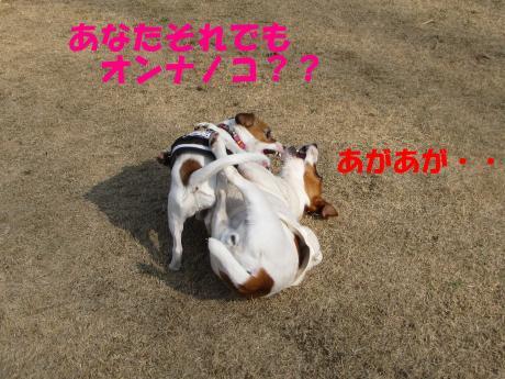 縺ォ繧薙§繧・1_convert_20100204224825[1]