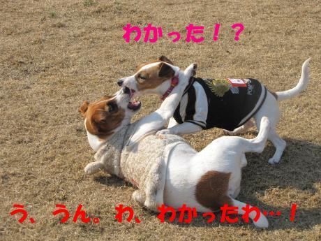 縺ォ繧薙§繧・3_convert_20100204224915[1]