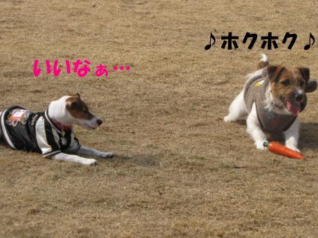 縺ォ繧薙§繧・_convert_20100204224438[1]