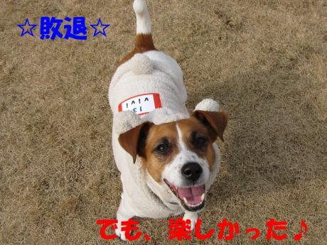 縺ォ繧薙§繧・6_convert_20100204225043[1]