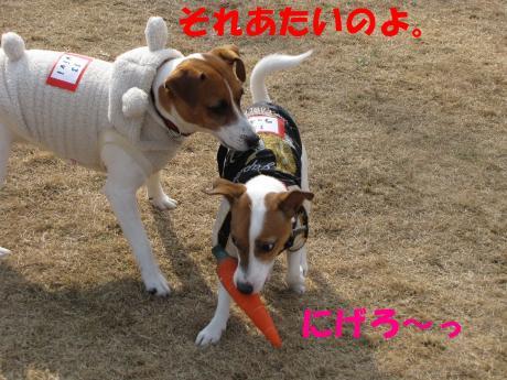 縺ォ繧薙§繧・_convert_20100204224531[1]
