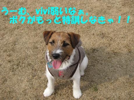 縺ォ繧薙§繧・7_convert_20100204225110[1]