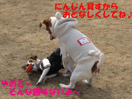 縺ォ繧薙§繧・_convert_20100204224735[1]