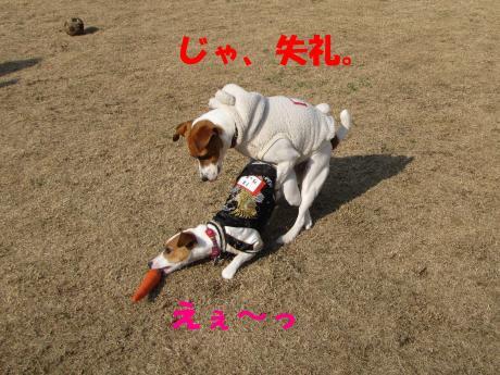 縺ォ繧薙§繧・_convert_20100204224623[1]