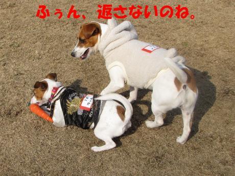 縺ォ繧薙§繧・_convert_20100204224557[1]