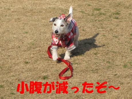 繝ゥ繧ケ繝・0_convert_20100207223459[1]