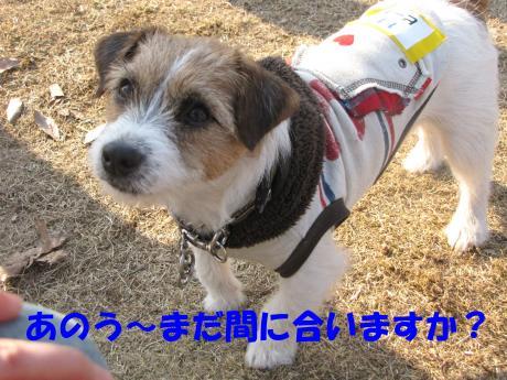 繝ゥ繧ケ繝・7_convert_20100207223759[1]