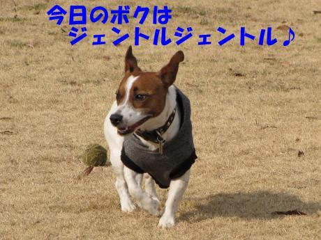 繝ゥ繧ケ繝・_convert_20100207223334[1]