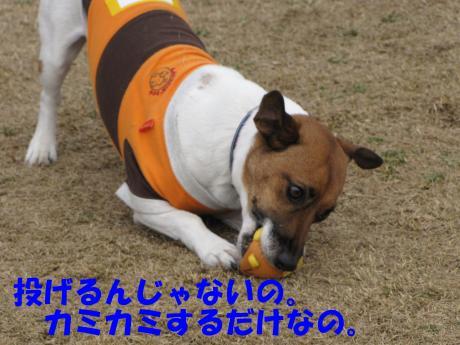 繝ゥ繧ケ繝・_convert_20100207223136[1]