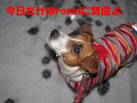 髮ェ5_convert_20100310223846[1]
