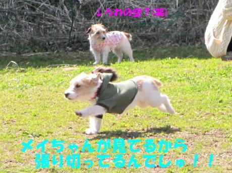 縺励▽縺・_convert_20100318230007[1]