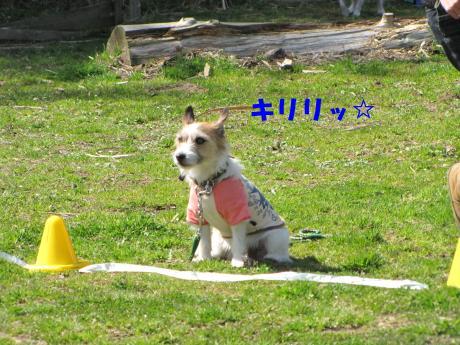 縺励▽縺・_convert_20100318230119[1]