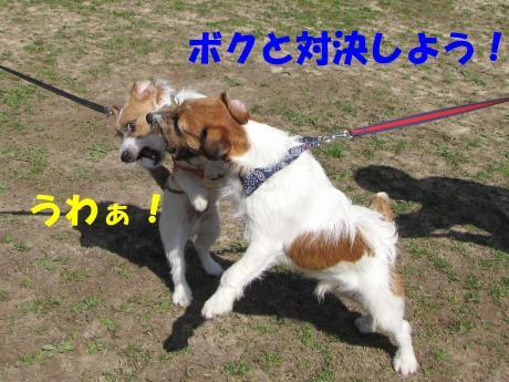 縺励▽縺・2_convert_20100323225259[1]