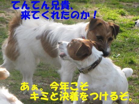 縺励▽縺・5_convert_20100323225015[1]