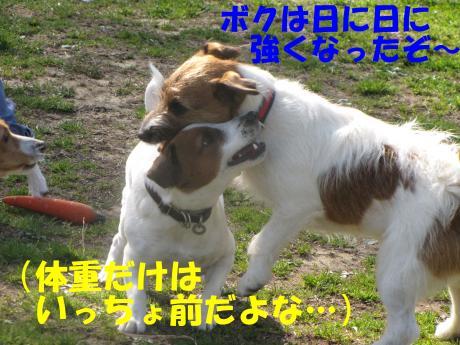 縺励▽縺・6_convert_20100323225034[1]