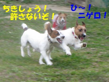 縺励▽縺・9_convert_20100323225157[1]