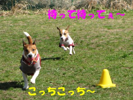 縺励▽縺・_convert_20100323224633[1]