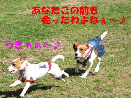 縺励▽縺・_convert_20100323224726[1]