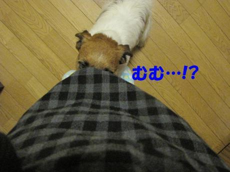 諤ェ謌・0_convert_20100329221922[1]