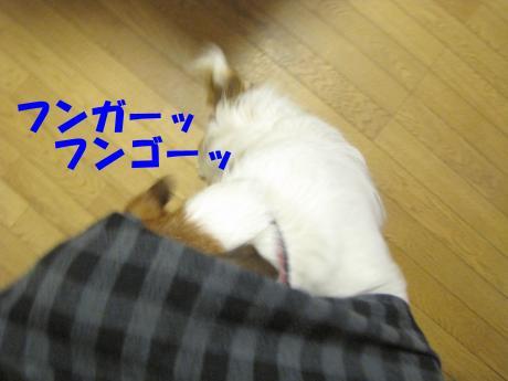 諤ェ謌・1_convert_20100329221943[1]