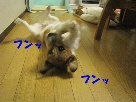 諤ェ謌・2_convert_20100329222005[1]