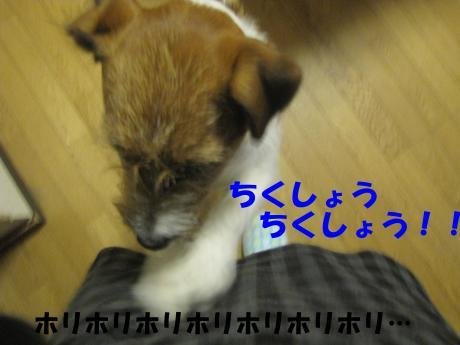 諤ェ謌・_convert_20100329221900[1]