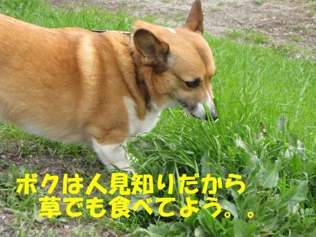 譯・2_convert_20100405225233[1]