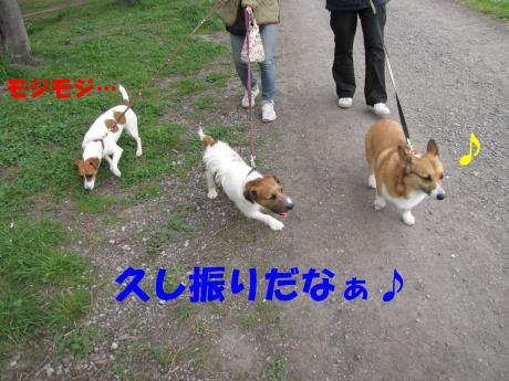 譯・2_convert_20100405224847[1]