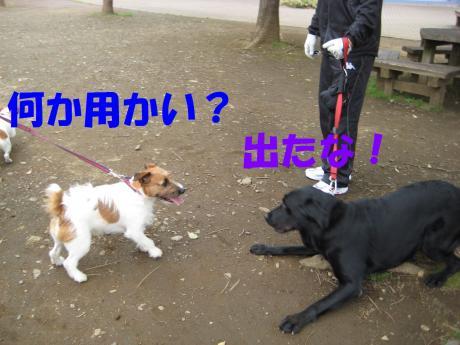 譯・6_convert_20100405225020[1]