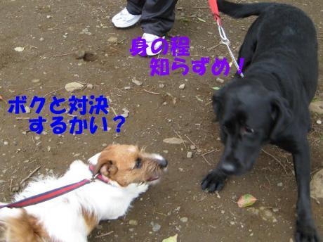 譯・7_convert_20100405225043[1]