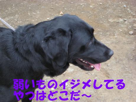 譯・5_convert_20100405224959[1]
