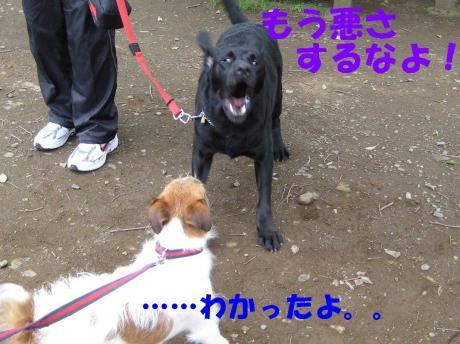 譯・9_convert_20100405225129[1]