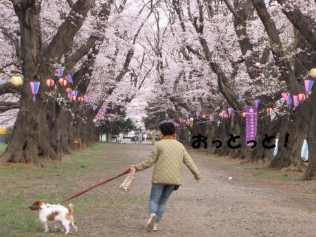 譯・_convert_20100405224709[1]