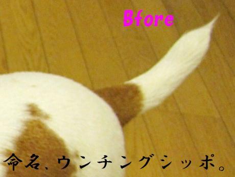 繧ォ繝・ヨ12_convert_20100408231900[1]
