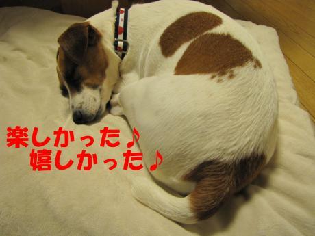 繧ォ繝・ヨ17_convert_20100408232050[1]